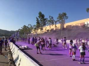 colorrunpurple