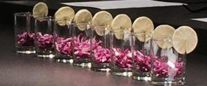 pirchshrimpglasses